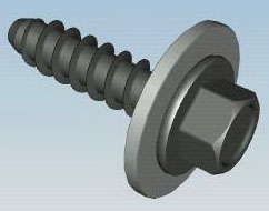 WM SCREW